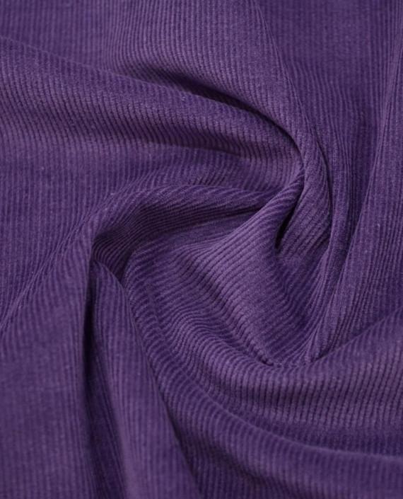 Микровельвет хлопковый 265 цвет фиолетовый полоска картинка