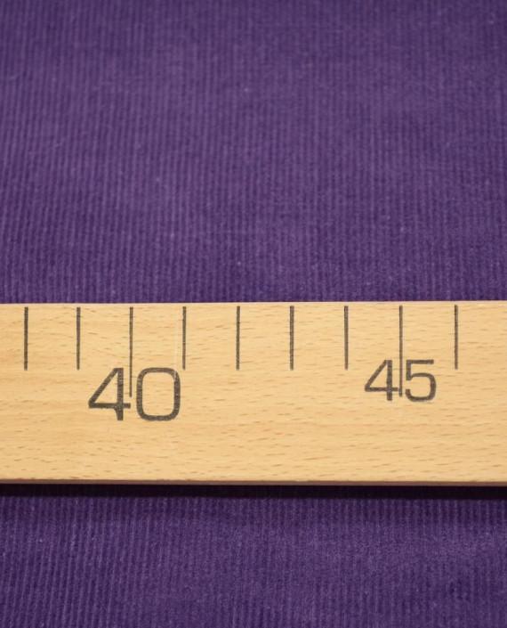 Микровельвет хлопковый 265 цвет фиолетовый полоска картинка 1